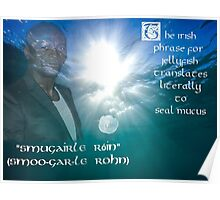 Seal's Mucus Poster
