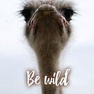 Be wild - Ostrich by garigots