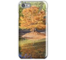 Swamp Cypress Reflections iPhone Case/Skin