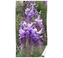 Wisteria Abstract Poster