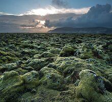 green carpet by JorunnSjofn Gudlaugsdottir