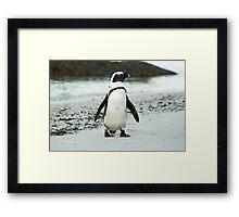 Little Suit Framed Print