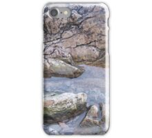 Rockpool iPhone Case/Skin