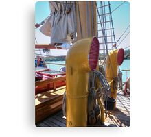 ear ear...........or two large hearing aids......! Canvas Print