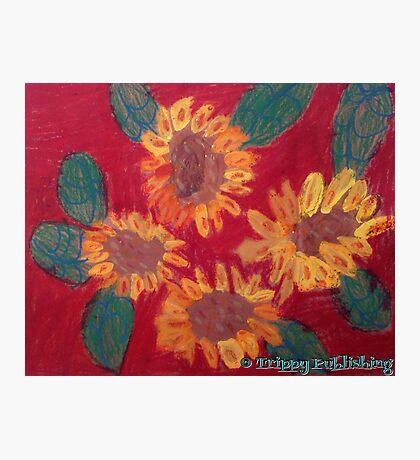 Lola's Sweet Sunflowers Photographic Print