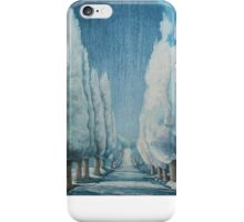 Winter Mystique iPhone Case/Skin