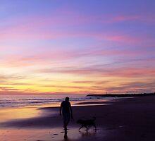 Dogbeach silhouette by WhiteSpirits
