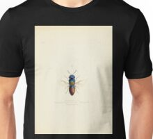Aid to the identification of insects Charles Owen Waterhouse 1890 V1 V2 022 Homalus Nanus Ionian Islands Unisex T-Shirt