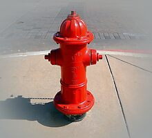 RED FIRE HYDRANT by Sandra  Aguirre