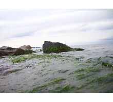 Beachside View Photographic Print