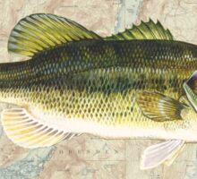 HONEOYE LAKE FINGER LAKES NEW YORK BASS FISHING FISH LARGEMOUTH SMALLMOUTH SENECA CAYUGA KEUKA CANANDAIGUA OWASCO  Sticker