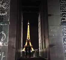Paris - The City of Love by Ryan Northover