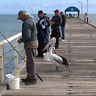 'YOU PULL THEM IN & I'LL EAT!' Henley Beach Jetty, Adelaide. by Rita Blom