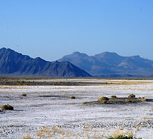 Badwater by Loisb