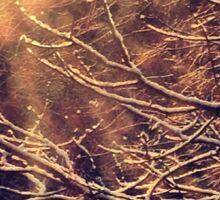 New Beginnings - by momma Sticker