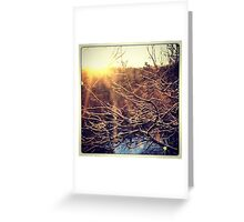 New Beginnings - by momma Greeting Card