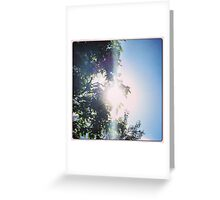 Shining Through - by momma Greeting Card