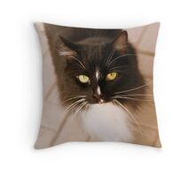 golden eyes.. Throw Pillow