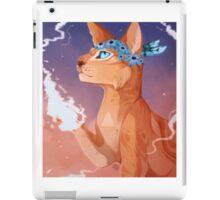 sunset the cat iPad Case/Skin