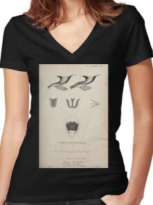Proceedings of the Zoological Society of London 1848 - 1860 V1 Mammalia 020 Women's Fitted V-Neck T-Shirt
