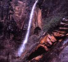 Weeping Rock, Zion National Park by Wayne King