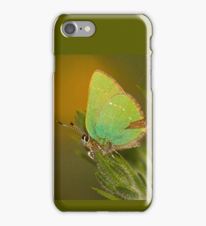 Green Hairstreak Butterfly iPhone Case/Skin