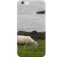 Stac Fada sheep iPhone Case/Skin