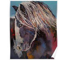 Highland Pony Poster