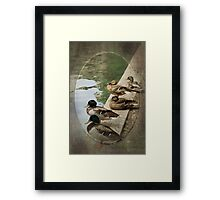 Ready Set GO Framed Print