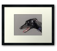 Black Greyhound Profile Framed Print