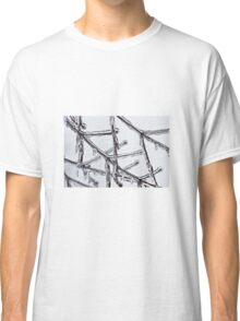 Iced twigs Classic T-Shirt