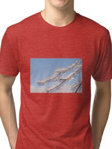 Twigs in ice  Tri-blend T-Shirt