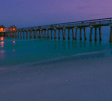 NAPLES PIER by George Trimmer