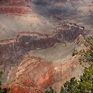 Grand Canyon by Teresa Zieba