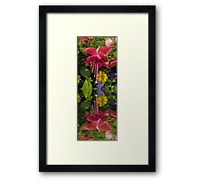 Fuchsia  flower in reflection Framed Print