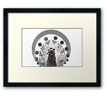 Trippy Smiling Llama Framed Print