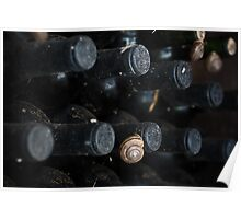 Wine and Snails Poster