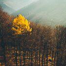 Loner by Hudolin