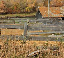 Old Barnyard by Jim Sauchyn