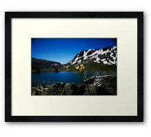 Mountain lake bliss Framed Print