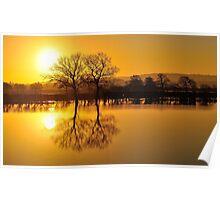 'Golden Flood' Poster