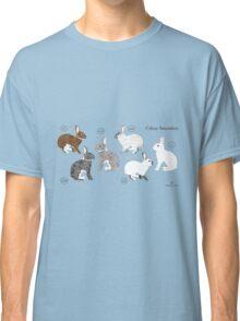 Rabbit Colour Genetics - Saturation Gene Classic T-Shirt