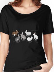 Rabbit Colour Genetics - Saturation Gene Women's Relaxed Fit T-Shirt