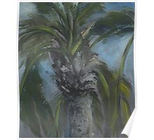 Blessed Shade-Palm Tree AC150603a Poster