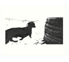 Reservoir Dawg Art Print