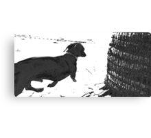 Reservoir Dawg Canvas Print
