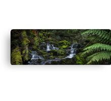 Quaille Cascades Canvas Print