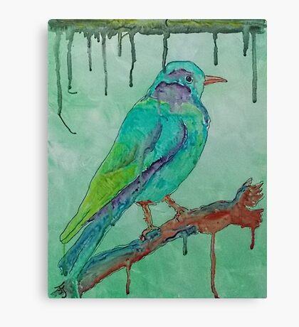 'Coloured Bird' Canvas Print