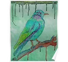'Coloured Bird' Poster