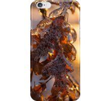 Ice Storm 2013 - Oak Leaves Jewelry iPhone Case/Skin